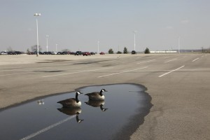 Learn how spring showers can bring water damage to your parking lot.